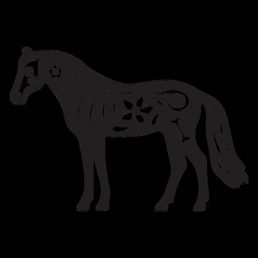 Cráneo de caballo cortado