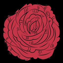 Dibujado a mano flor rosa naturaleza