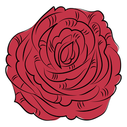 Rose flower nature hand drawn