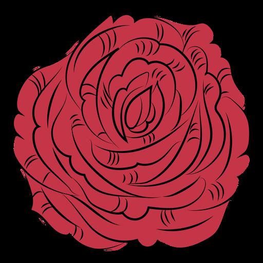 Rose flower nature hand drawn