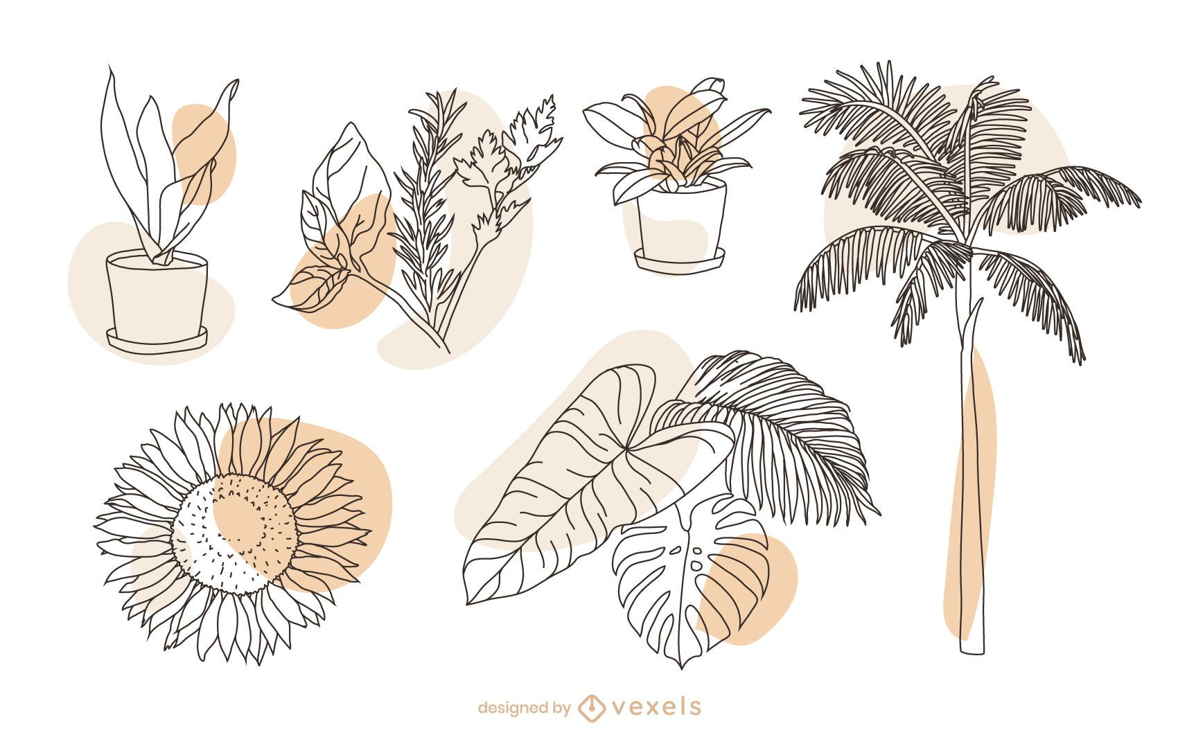 Conjunto de elementos de naturaleza vegetal