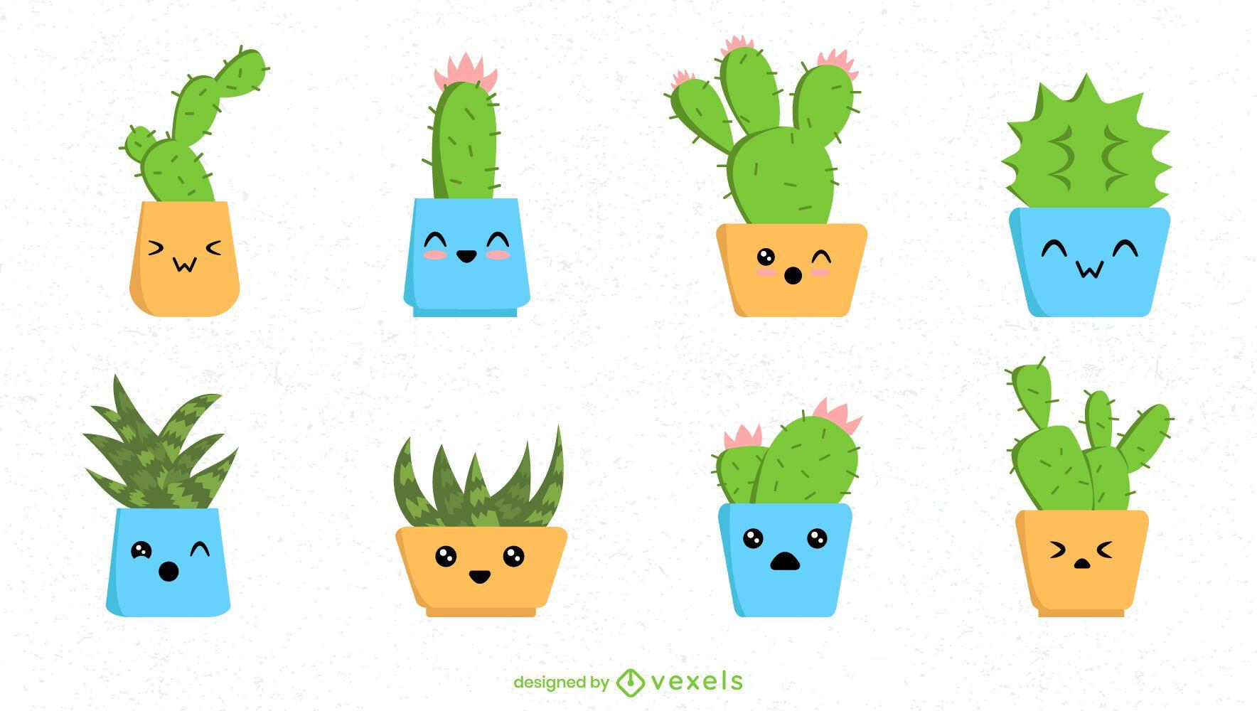 Lindo conjunto de cactus