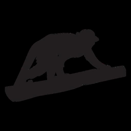 Common squirrel monkey silhouette