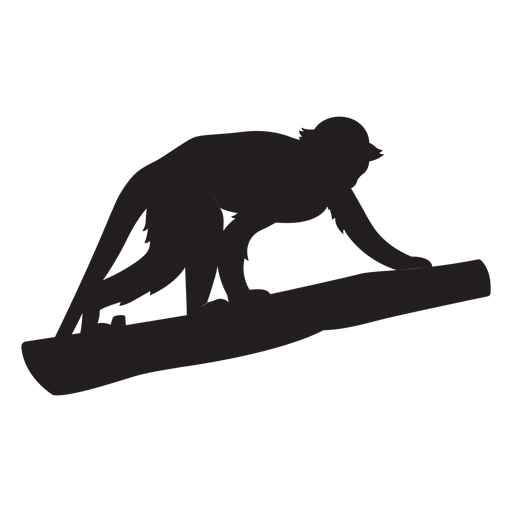 Silhueta de macaco-esquilo comum