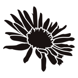 Plantilla de flor de margarita