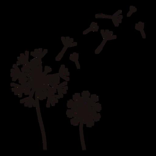 Dandelion flower blowing stroke