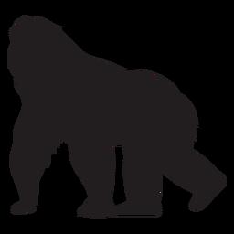 Silueta de especie de mono gorila
