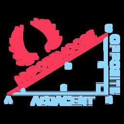 Hypotemoose pythagorean theorem