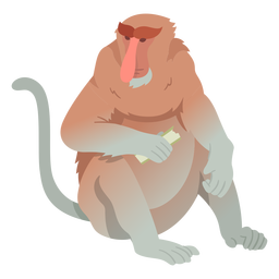 Long nosed monkey illustration
