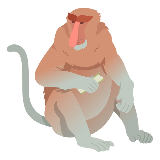 Long nosed monkey illustration