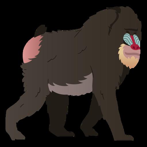 Mandrill monkey illustration mandrill