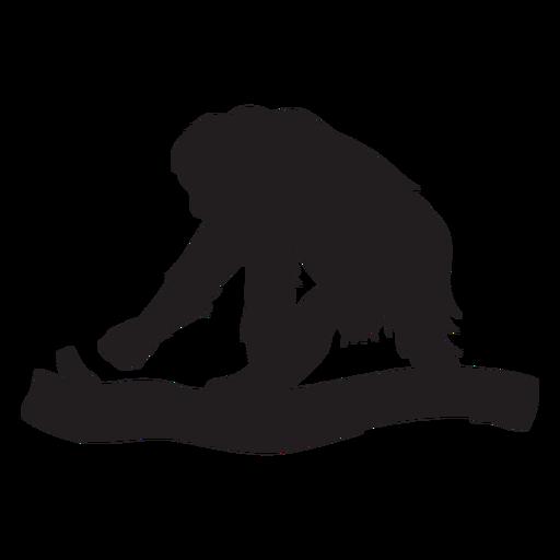 Silueta de mono orangután