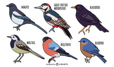 Bird species set