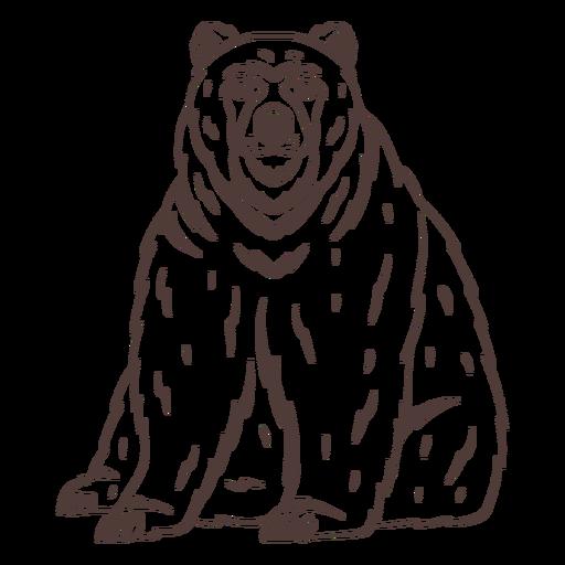 Dibujado a mano gran oso sentado