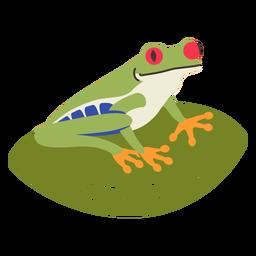 Costa rica frog flat