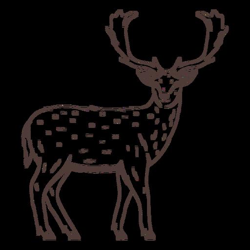 Deer looking back hand drawn