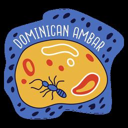 Dominican ambar doodle