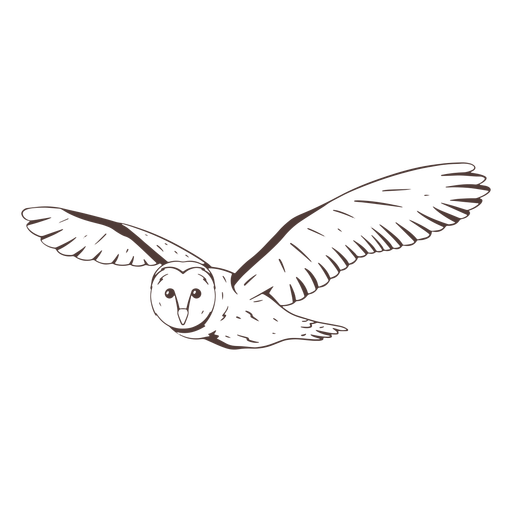 Flying barn owl hand drawn Transparent PNG