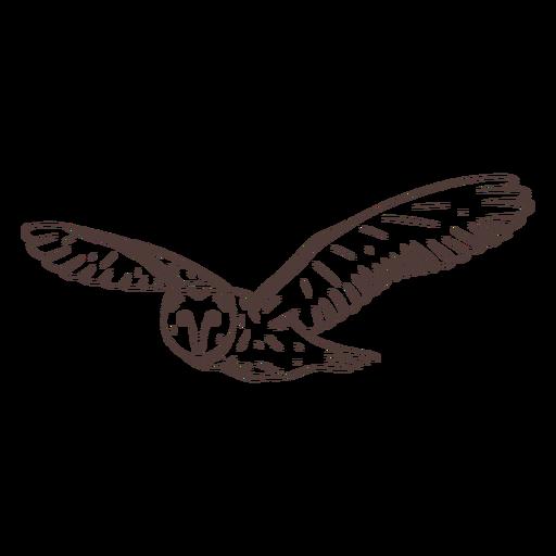 Flying barn owl hand drawn