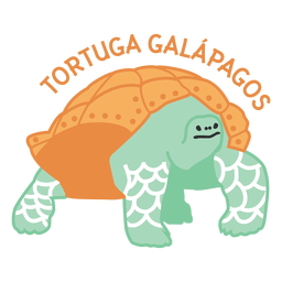Planície de tartaruga de Galápagos