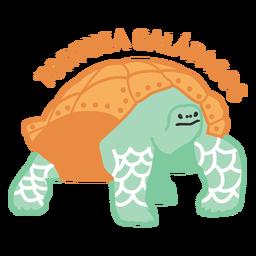 Tortuga galápagos plana