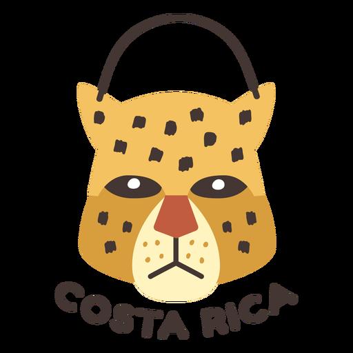Jaguar costa rica flat