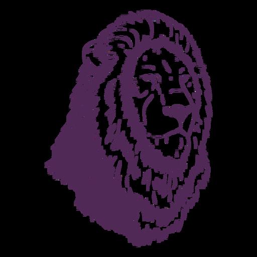 Dibujado a mano cabeza de melena de león