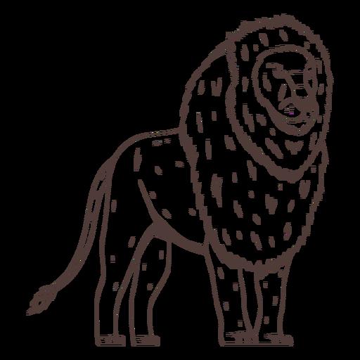 Lion side hand drawn