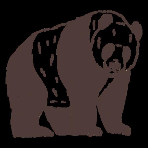 Panda mirando dibujado a mano