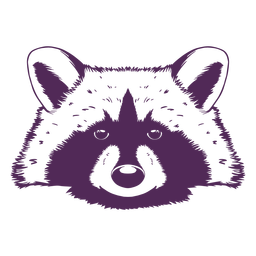 Dibujado a mano cabeza de mapache