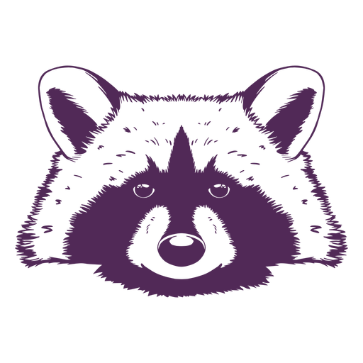 Raccoon head front hand drawn Transparent PNG