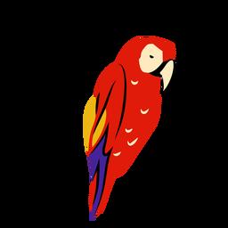 Scarlet macaw honduras illustration