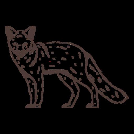 Serious fox hand drawn