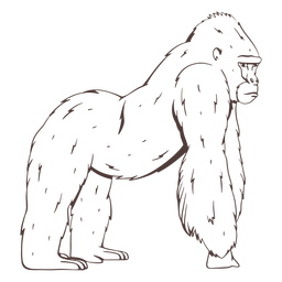 Dibujado a mano gorila serio