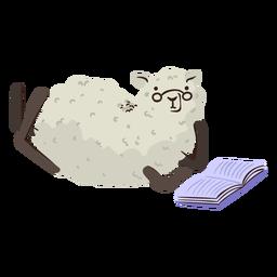 Sheep reading character