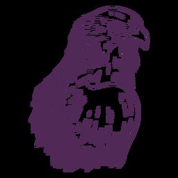 Dibujado a mano águila lateral
