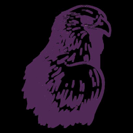 Side eagle hand drawn