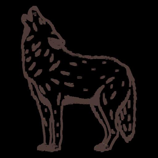 Dibujado a mano lobo aullando de pie