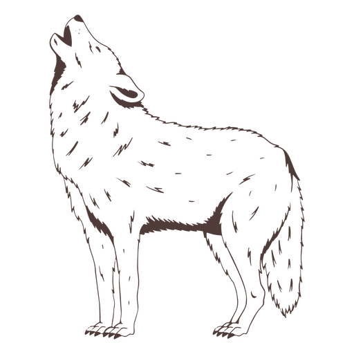 Standing howling wolf hand drawn