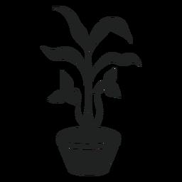 Trilium houseplant cut out