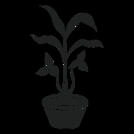Trilium planta de interior cortada Transparent PNG