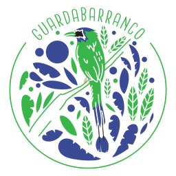 Turquoise browed motmot
