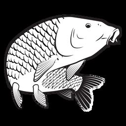Carp fish stroke