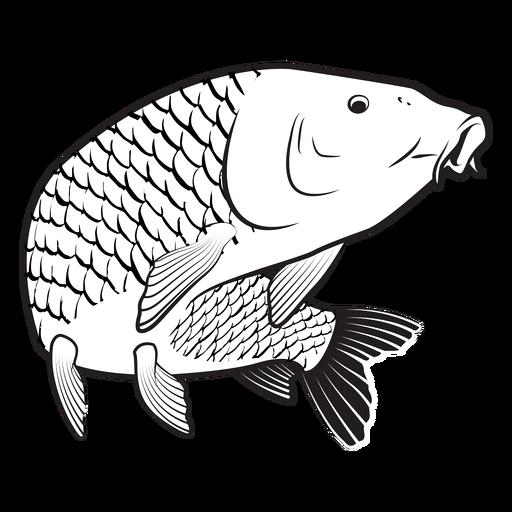 Golpe de pez carpa