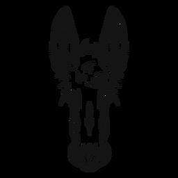 Cabeza de burro alto contraste