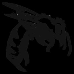 Insecto avispa alto contraste