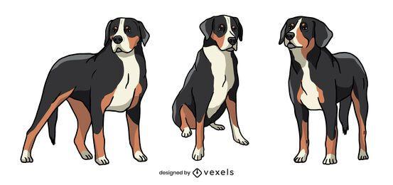 Conjunto de pose de cachorro suíço