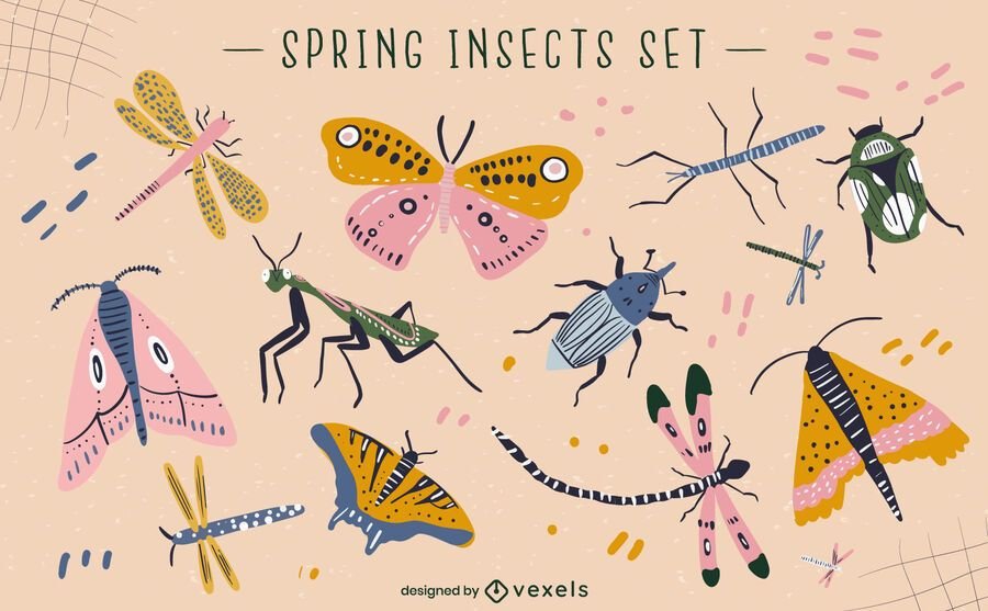 Spring insects vector set