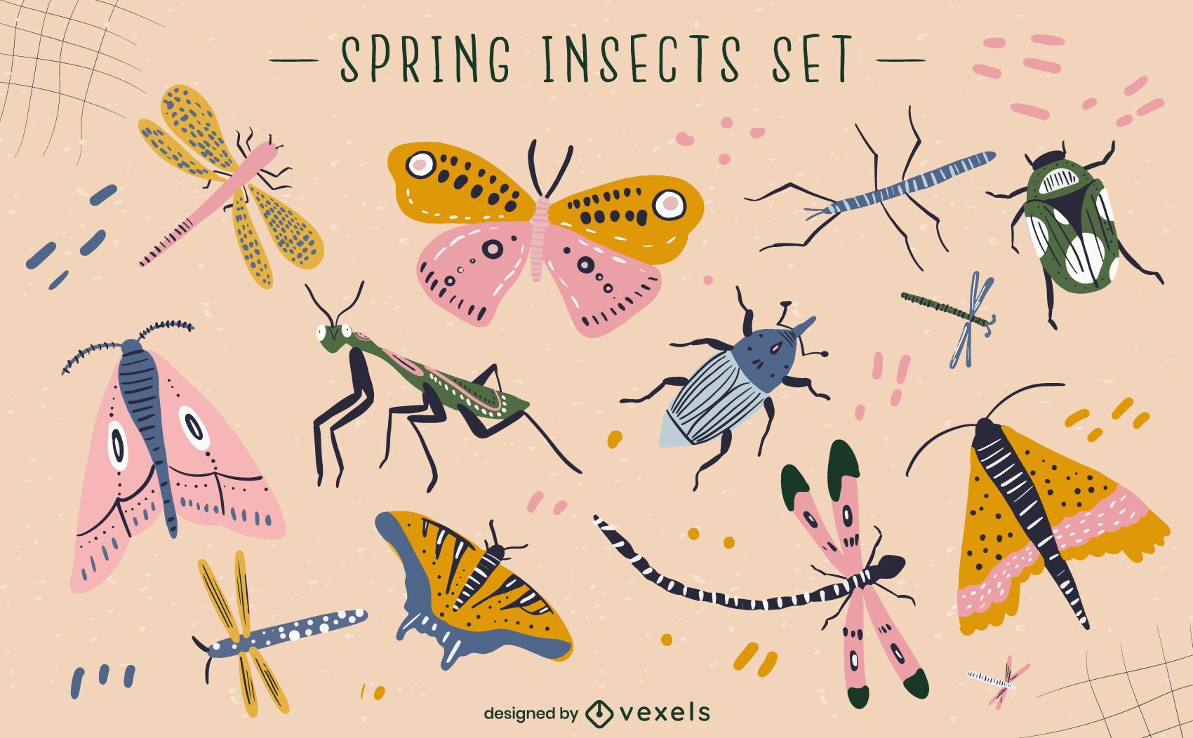 Conjunto de vectores de insectos de primavera