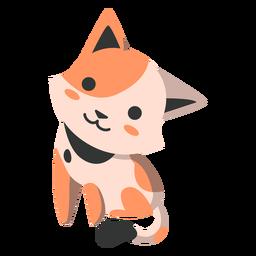 Lindo gatito semi plano